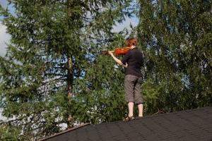 Viulunsoittaja aitan katolla